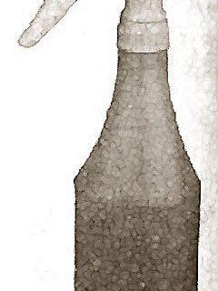 BOTTLE (24 OZ, W/SPRAYER)